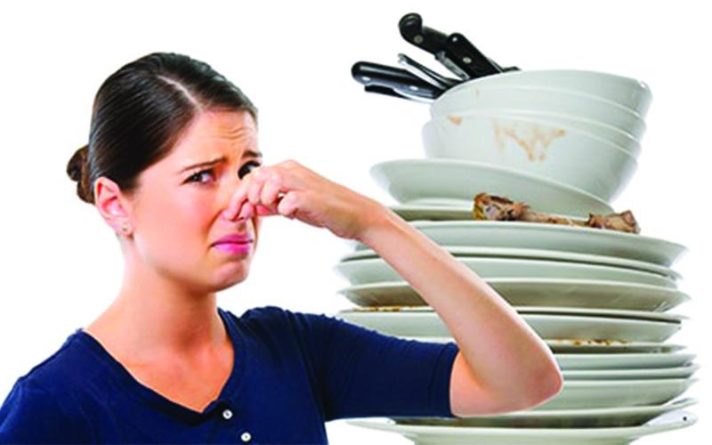 بوگیر ماشین ظرفشویی فینیش